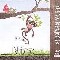 Nico  2-4-2017.jpg